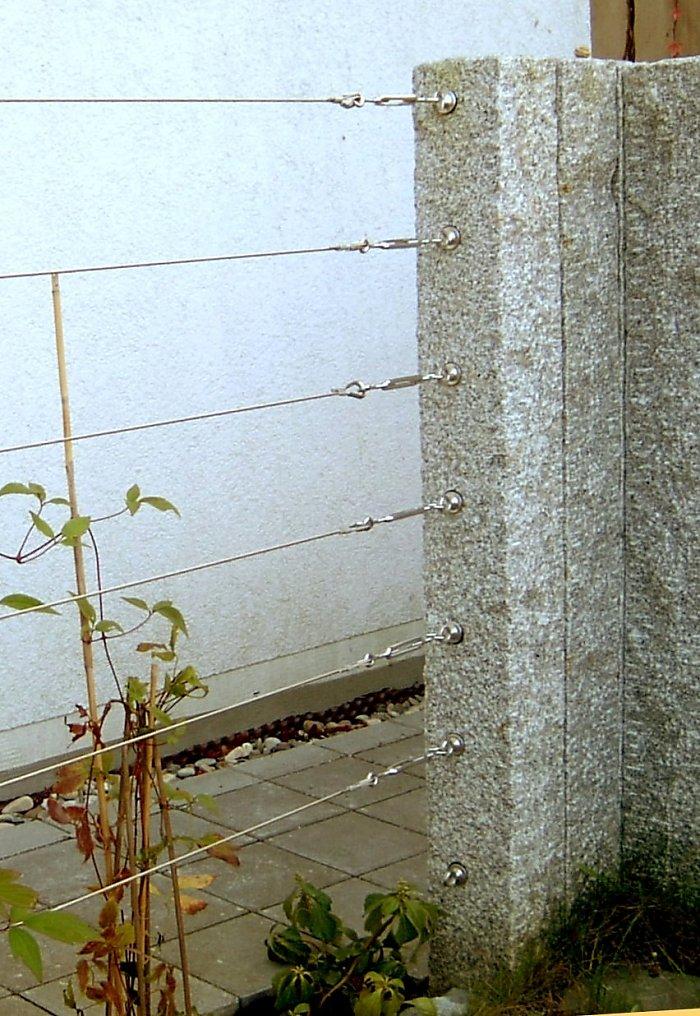 Zaunbegrunung M Kletterpflanzen Auswahl Kultur Und Rankhilfen