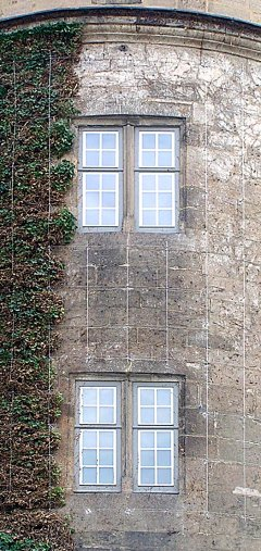 Greenery on an old castle tower, Stuttgart / Baden-Wuerttemberg