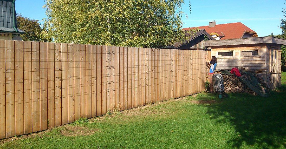 Zaun Begrünen zaunbegrünung m. kletterpflanzen - auswahl, kultur und rankhilfen