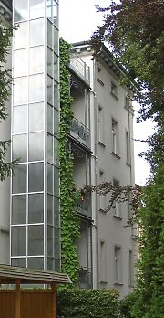 Balcony greening with Dutchman's pipe in Weimar / Thuringia