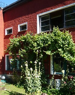 Bauhaus-style and greening with grapevine