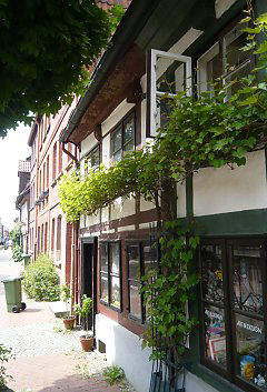 wood timbered house, greening