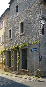 Rubble masonry facade with grapevine in Freyburg / Saxony-Anhalt
