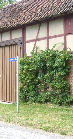 Old historical spanned wire for vines, Kleinwelsbach / Thuringia
