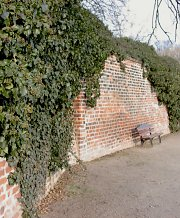 Wall partially greened with Ivy, baroque castle garden Delitzsch / Saxony