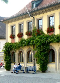 Hanging geraniums over Wisteria on town hall in Lichtenfels / Bavaria