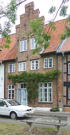 House greening with grapevines in Lübeck