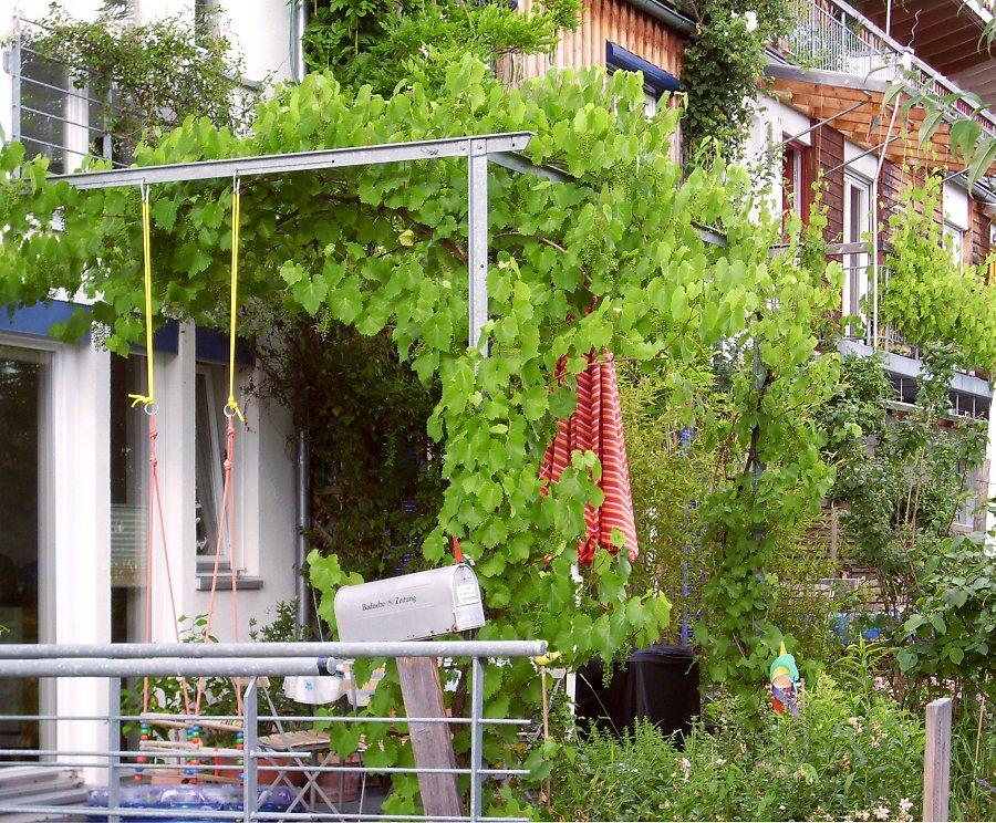 Pergola am Haus selbst bauen und begrünen