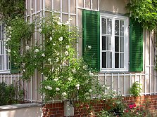 Trellis with white painted wooden laths, garden city Marienbrunn / Leipzig / Saxony