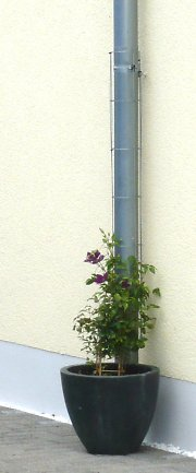 Drainpipe with growing grid