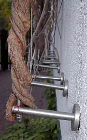 Damaged climbing plant support system