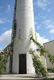 Chimney greened with Hops, Brauerei in Krostitz / Saxony