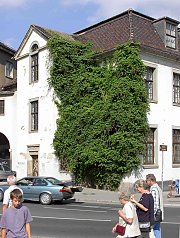 Mighty trumpet creeper, old post office in Jena / Thuringia