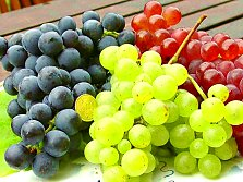 Table grape varieties from the garden