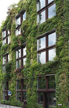 """Vertical Garden"" from Patrick Blanc"