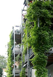 Green metal balcony supports