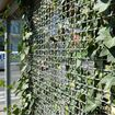 Stainless steel lattice with ivy at a bus stop