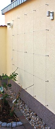Light construction style wire rope system for clematis