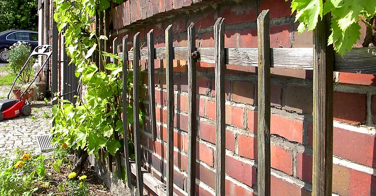 Old trellis for grapevine, mounted with steel bolts