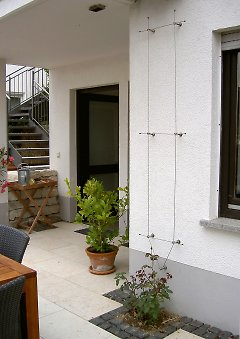 rankhilfe als drahtseilsystem grundform nr 7010. Black Bedroom Furniture Sets. Home Design Ideas