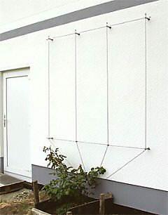 rankhilfe als drahtseilsystem grundform nr 7050. Black Bedroom Furniture Sets. Home Design Ideas