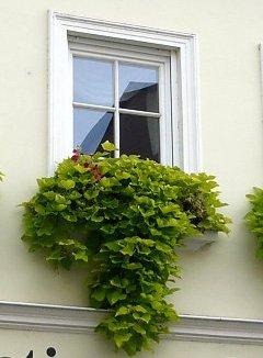 blumenk sten beispiele f r gestaltung und bepflanzung. Black Bedroom Furniture Sets. Home Design Ideas