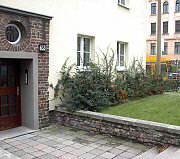 graffiti und begr nung pflanzen als graffitischutz. Black Bedroom Furniture Sets. Home Design Ideas