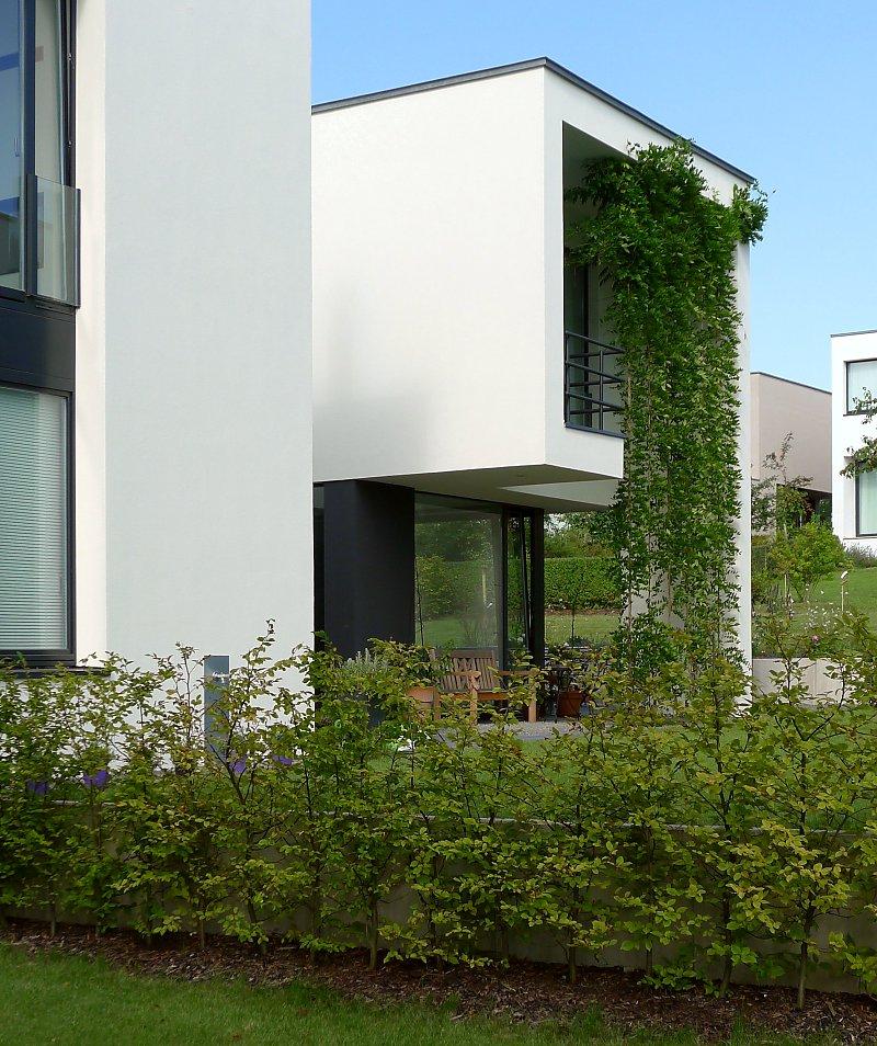 Bauhaus stil und neues bauen infos zu fassadenbegr nungen for Bauhaus bauen
