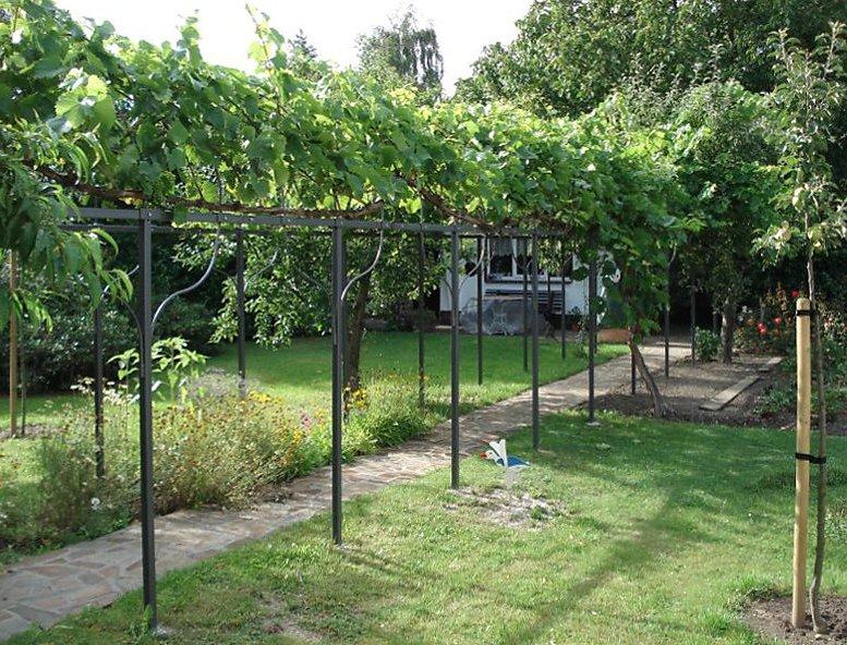 Design#5001527: Fassadengruen: laubengang aus holz oder metall bauen und begrünen. Gartenlaube Pergola Begrunen