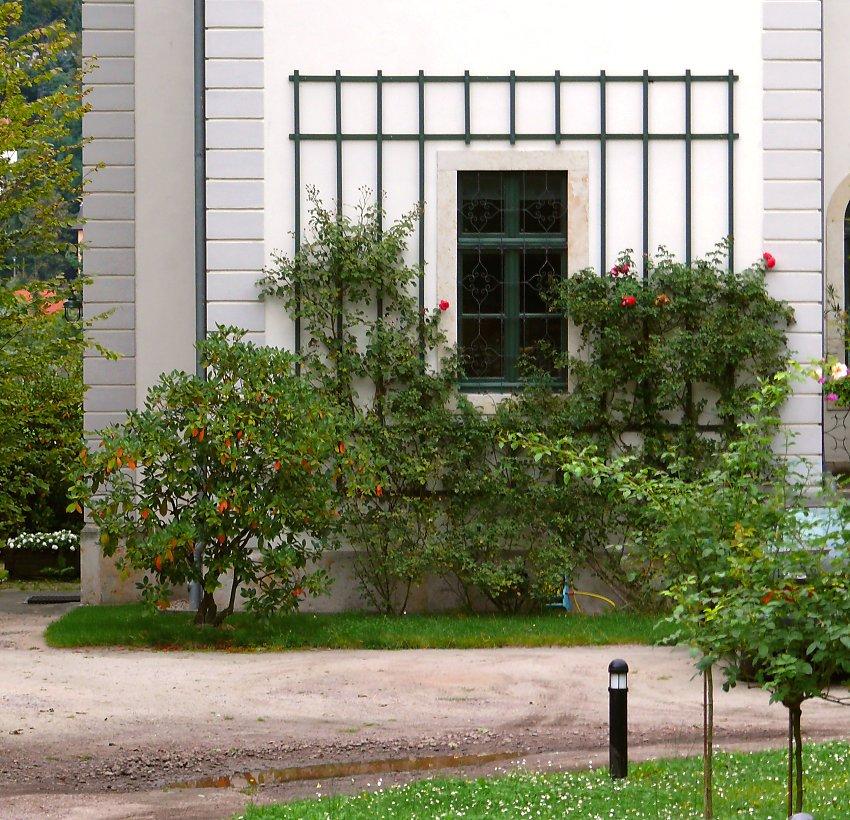 details beim klassischem spaliersystem aus holz. Black Bedroom Furniture Sets. Home Design Ideas