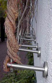 Fassadenbegr 252 Nung Bausch 228 Den Durch Efeu U A Kletterpflanzen