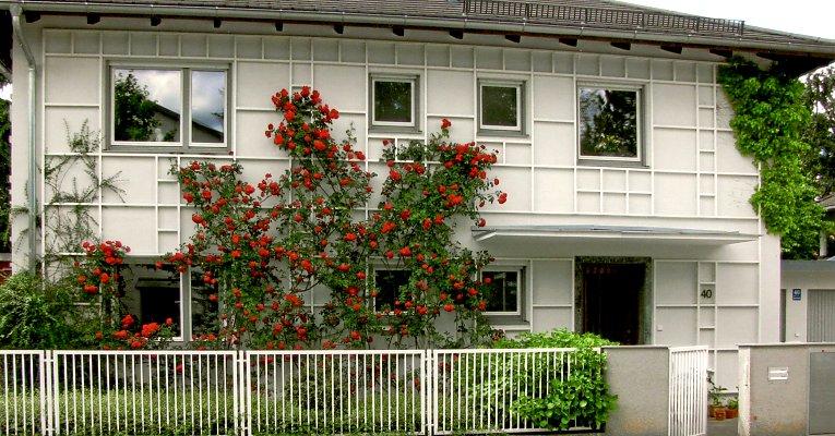 Bauhaus Stil Und Neues Bauen Infos Zu Fassadenbegrunungen